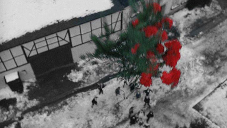Edgar Reitz: 'Het verhaal van de bloemen strooiende piloot - in werkelijkheid was het een man die bloemen naar zijn moeder gooide - keert steeds terug in mijn films. Het raakt me omdat het zo symbolisch is.' Beeld null