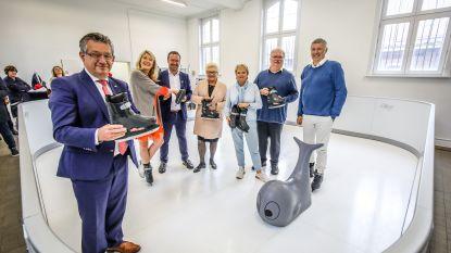 Brugge weert 'energieverslindende' ijssculpturen en kiest voor duurzame schaatspiste in Minnewater