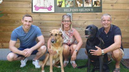 Trio legt Dodentocht af voor verwaarloosde en mishandelde honden