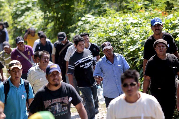 Groepen zoeken naar de vermiste studenten. Beeld afp