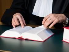 Justitie in beroep: Dordts fraudeonderzoek zonder politie moet kunnen