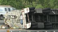 Vrachtwagen met 20 miljoen bijen crasht op snelweg