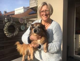 "Nathalie redt hondje van verdrinkingsdood: ""Pas achteraf besefte ik hoe koud het water wel was"""
