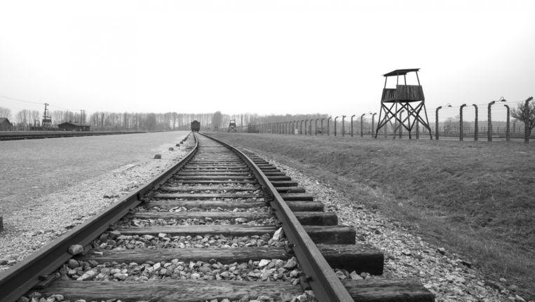 Concentratiekamp Auschwitz. Beeld Neil Farrin/JAI/Corbis