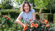 Tuintips van Laurence: hoe we de tuin moeten aanpakken na de droogte