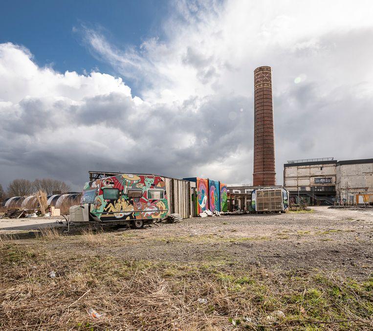 Het voormalige suikerfabriekterrein in Groningen.  Beeld Harry Cock