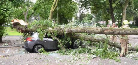 Enorme tak plet auto op Heemraadssingel: 'Hartstikke windstil, maar plots zag ik het gebeuren'