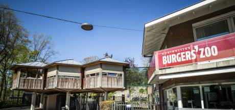Burgers' Zoo en Openluchtmuseum gaan snel weer open, maar met minder bezoekers