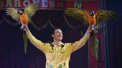 """Win duotickets voor Circus Barones. """"We nemen de bezoekers mee naar sprookjesland"""""""