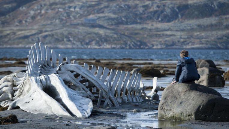 Beeld uit Leviathan (2014). Beeld