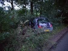 Auto ramt boom in Nijkerk, bestuurder gaat er vandoor