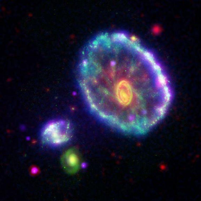 Dit beeld van het Karrewielstelsel laat een regenboog van golflengtes zien. Deze werden waargenomen door NASA's Galex (blauw), Hubble (groen), Spitzer (rood) en Chandra (paars). Beeld NASA