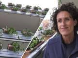 Lelijkste flat van Brabant wordt groenste flat van Nederland