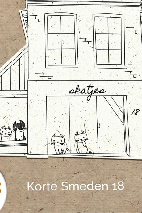 Taartje eten met kat op schoot? Binnenkort kan het in kattencafé Skatjes in Zwolle