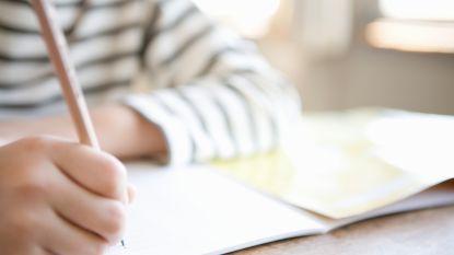 Japanse bolleboos (9) slaagt voor wiskunde-examen op universitair niveau