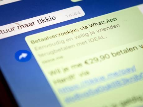 Arnhemse verdachte van grootschalige oplichting via internet mag thuis wachten op strafzaak