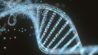 Uitwisseling van DNA-gegevens van criminelen tussen Spanje en België leverde al 471 matches op