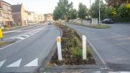 Gras in middenberm aan station brandt weg