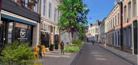 Willem II-straat moet als eerste flink vergroenen, daarna volgen nog vijf grote straten in de binnenstad
