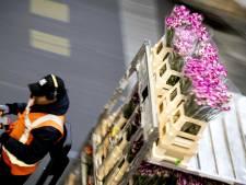 Waarde landbouwexport ondanks corona naar recordhoogte