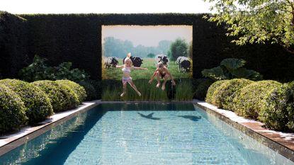 Grootte speelt geen rol: de tuin van Bart en zijn gezin is pareltje van amper 250 m²