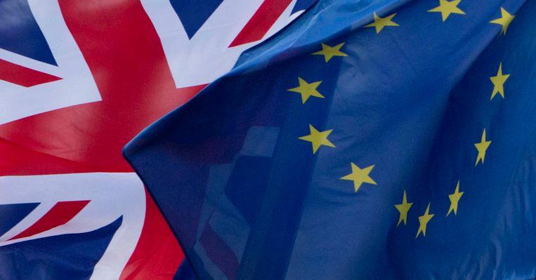 Onder de nieuwe Belgen zijn er heel wat Europese ambtenaren.  Werknemers van Europese instellingen moeten namelijk burgers zijn van een lidstaat van de Europese Unie.