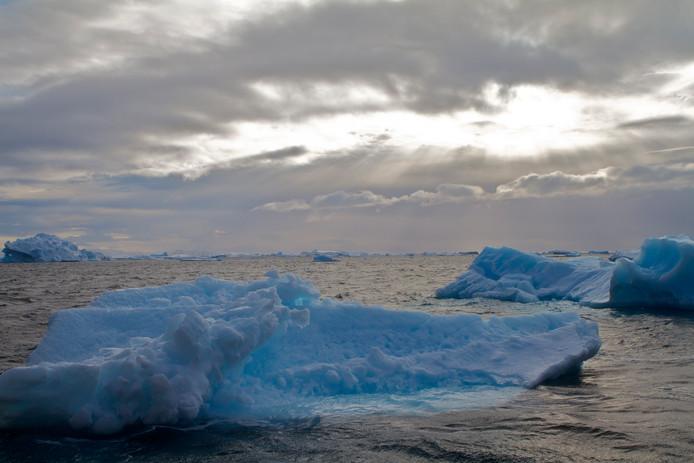 Weddell Sea.