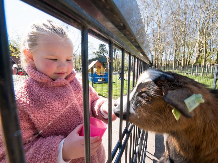 De 4-jarige Lotte bezoekt met haar oma de met sluiting bedreigde kinderboerderij in het Bospark, Alphen aan den Rijn. FOTO MARTIN SHARROTT