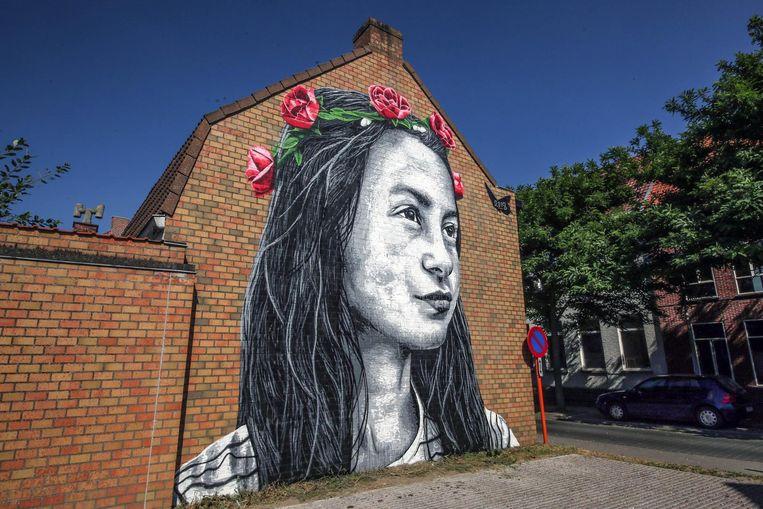 Het werk is te bewonderen op een muur tegenover basisschool BAMO in de Rozenstraat.