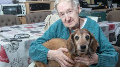 """Hilda is 80 en eenzaam: """"Mijn hondje is de reden waarvoor ik leef"""""""