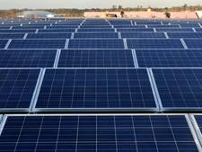 Windpark wil 29.000 zonnepanelen bij De Grift in Nijmegen-Noord plaatsen
