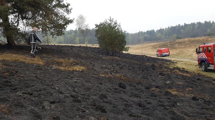 De brandhaardjes waren snel geblust.