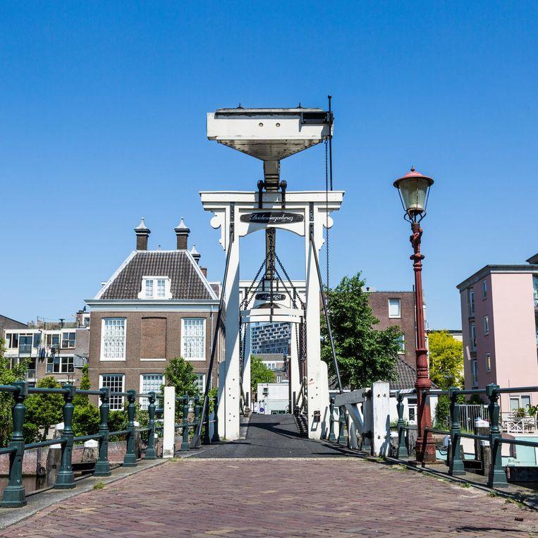 Het loop- en fietsbruggetje naar het Realeneiland Beeld Tammy van Nerum