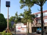 Moergestel: vleermuizen zitten bouw van zorgappartementen dwars