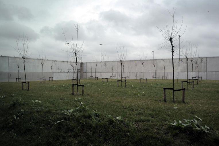 De binnenplaats van het detentiecentrum in Rotterdam. Beeld Joost van den Broek
