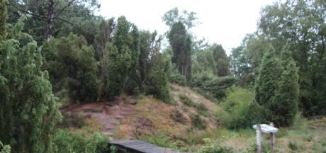 Opkoopregeling voor veetelers rond Natura2000 gaat van start