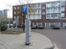 Prinses Irenebuurt verliest zaak over betaald parkeren