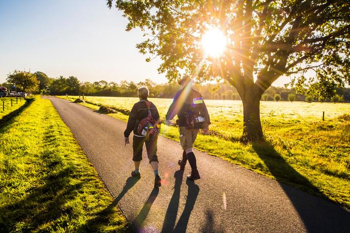 Deelnemers aan de Nachtmarathon gaan de laaste kilometers in tijdens zonsopkomst.