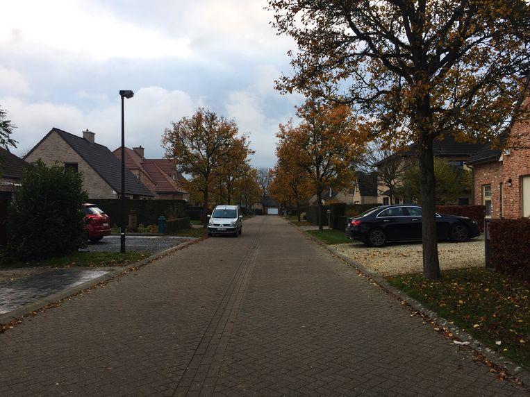 De Kerselarenstraat in Overijse.