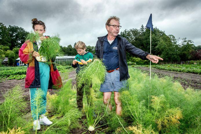Boer Sijmen Brandsma geeft tips over de oogst van venkel. 'Ook het loof kun je eten.'
