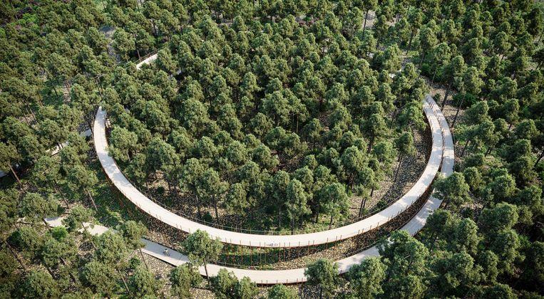 De stalen fietsbrug van 700 meter lang stijgt geleidelijk tot 10 meter hoogte.