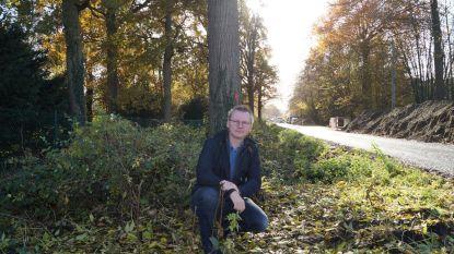 """Agentschap Natuur en Bos gaat minder snel kappen: """"Boodschap in Brussel is aangekomen"""""""