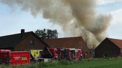Blikseminslag veroorzaakt stalbrand met gigantische rookpluim in Kasterlee: lichte asbestvervuiling in onmiddelijke omgeving