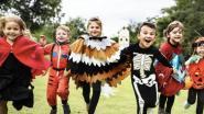 Fort van Merksem decor van Halloween Survival Run