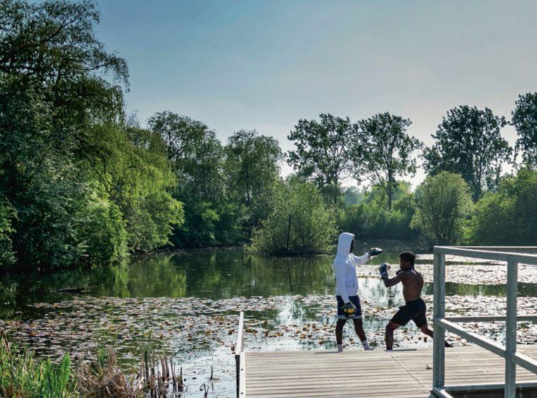 Park Halfweg