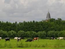 Geloofsgenoten staan pal achter Werkhovense boer Gert na branden