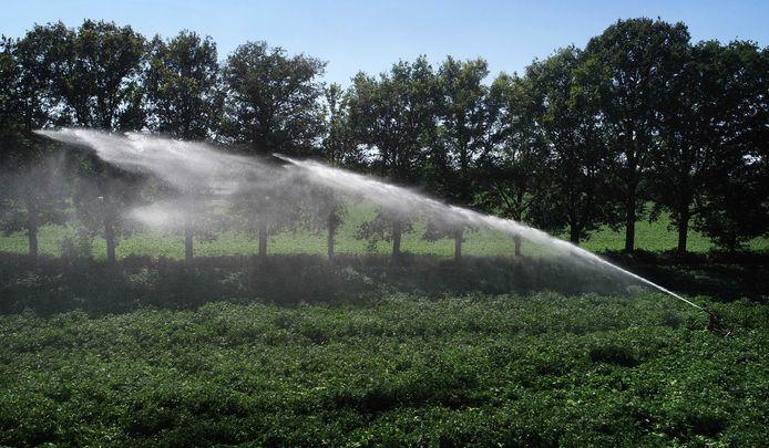 Door langdurige droogte moeten de aardappelvelden - zoals hier in de Achterhoek - extra worden besproeid. Juni stevent af op een record, als mogelijk de droogste junimaand sinds de weermetingen in 1901 begonnen.