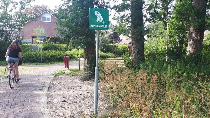 Binnenkort verdwijnen de hondentoiletten in Rijssen-Holten; wel komen er meer afvalbakken en dispensers voor hondenpoepzakjes.
