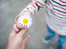Zorgen om veiligheid van negentien kinderen uit Woerden