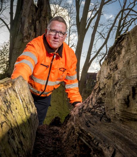 Na de tornado van vorig jaar bezorgt elke storm dé bomenman van Zutphen de bibbers